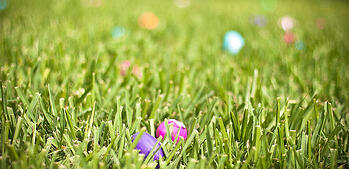 Celebrate Spring in Our Community